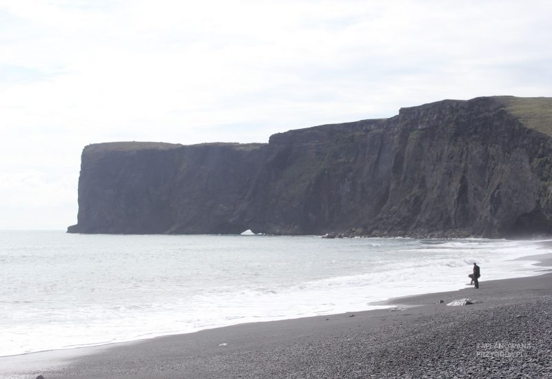 islandia_3-10-2014_dyrnohaley_1